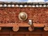 Chemrey Kloster/Ladakh