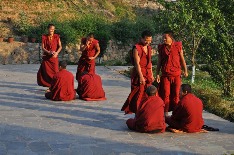Debating Monks Parping